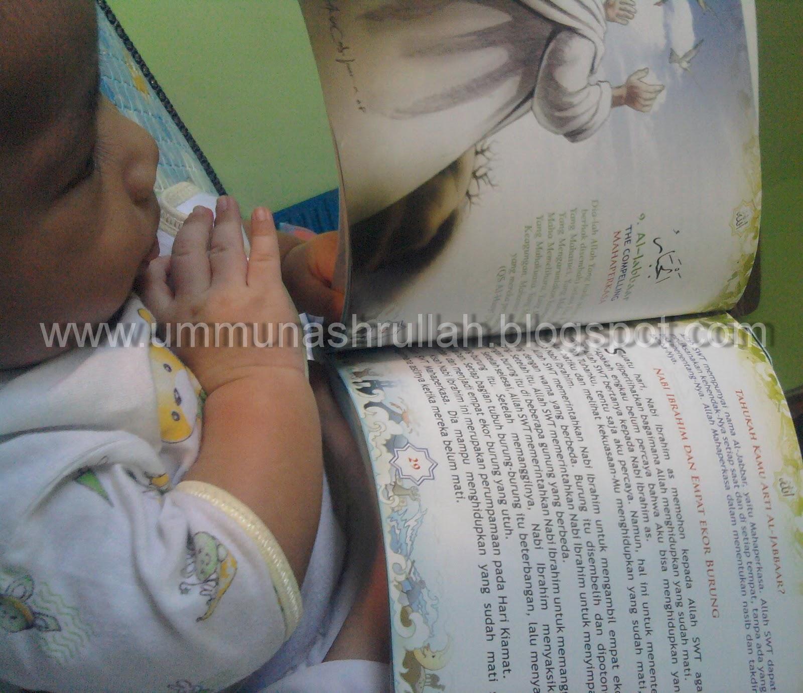 Ummu Nashrullah: Perkembangan Bayi 12 Bulan Pertama