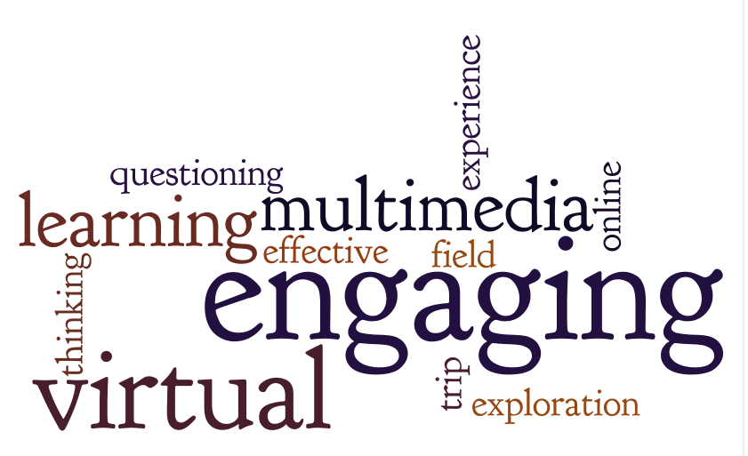 Virtual Field Trip Word Collage