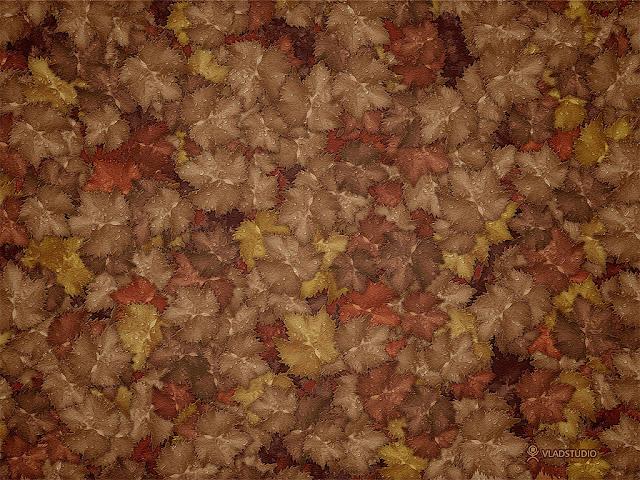 Autumn Brown7