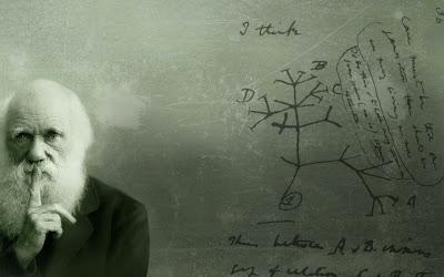 Ciência, erros científicos, principais erros das ciência.