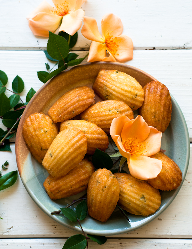 Desserts for Breakfast: Vanilla Bean and Thyme Madeleines