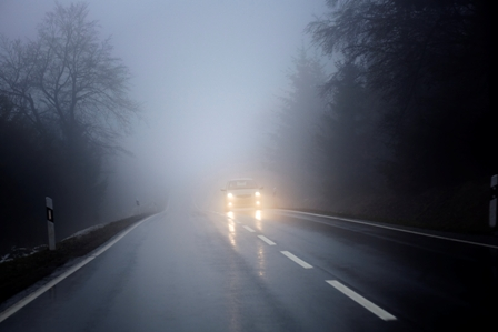 fog, road, winter