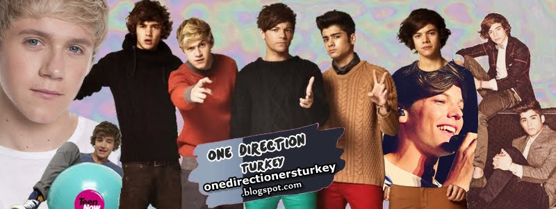 One Direction Turkey