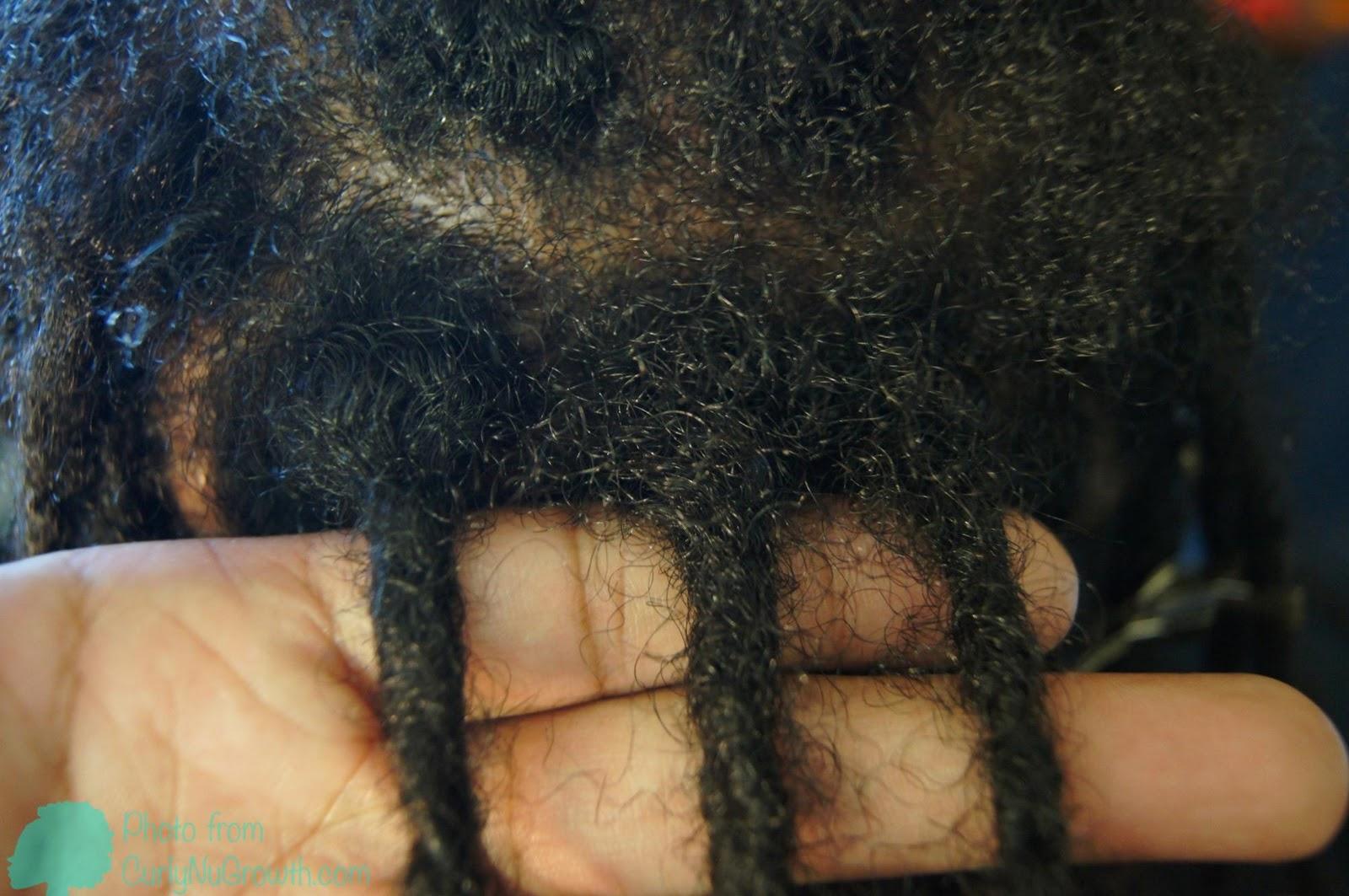CurlyNuGrowth | it begins hair.: Interlocking LocsMyths' Traditional ...