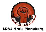 SDAJ - Kreis Pinneberg