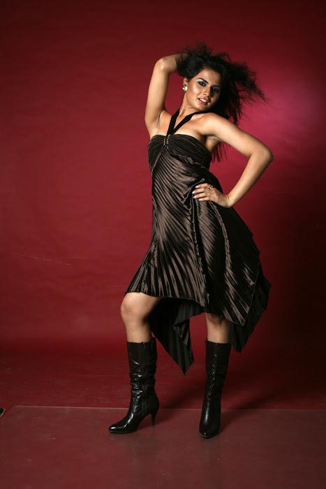 tosha dazzling shoot actress pics