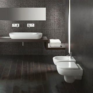 Toilets and bidets suspended, advantages and disadvantages