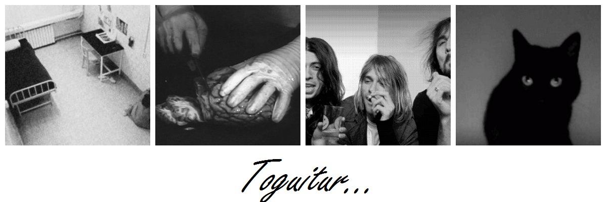 Toguitur