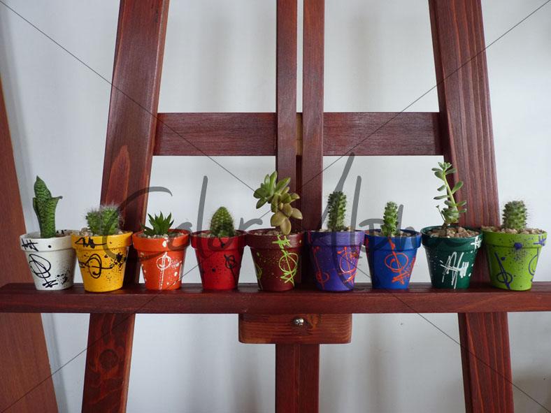 color alpha - macetas pintadas: mini macetas pintadas + cactus +