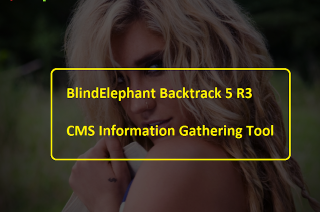 BlindElephant - Web Application and Plugins Identification Tool | CMS Information Gathering