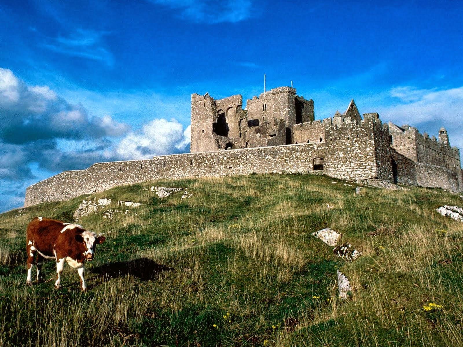 CASTLE HD WALLPAPERS | FREE HD WALLPAPERS Ireland Castle Wallpaper