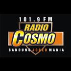 101.9 FM Radio Cosmo