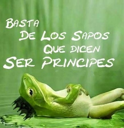 Entre mi alma y yo princesas y sapos - Sapos y princesas valencia ...