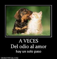 Del Odio al amor.....
