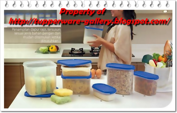Tupperware - Kitchen Organizer