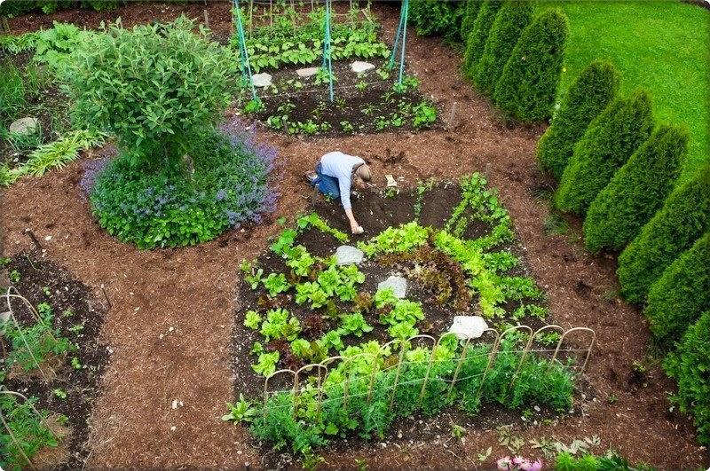 Stiglo je proljeće, vrijeme je za sadnju i uređenje vrta - Moj Vrt Cvijeća
