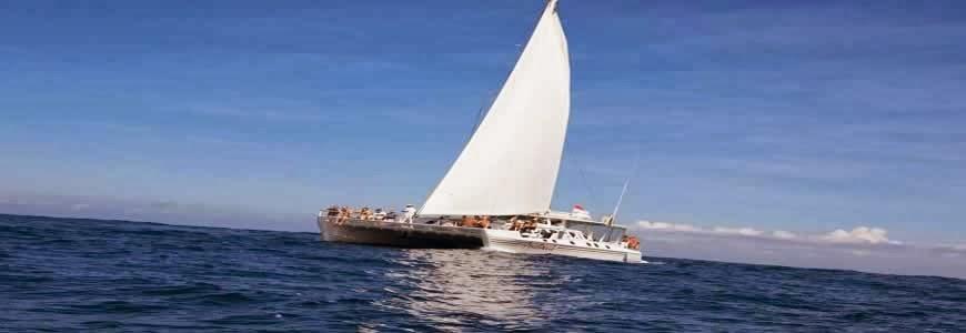 Bali Cruise