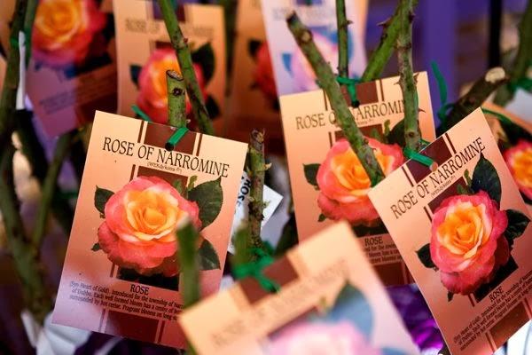 rosas en contenedor