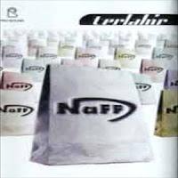 Naff - Terlahir (Full album 2000)
