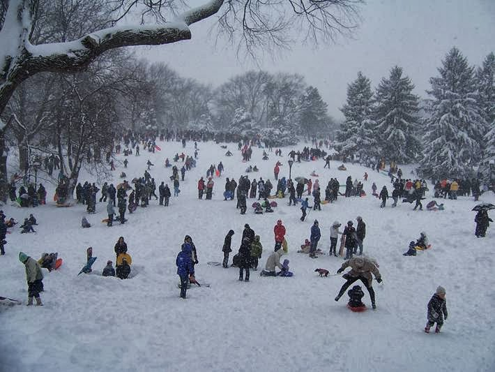 Snow Picture of Central Park - New York