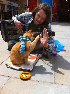 James Bowen, kedi, Kitap OkuYorum, Sokak Kedisi Bob,