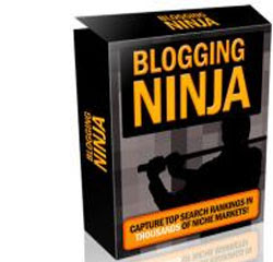 Blogging Ninja