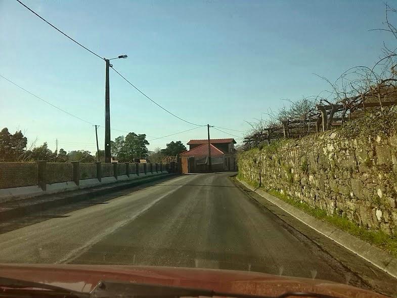 Estrada EN-305 - Zona do Sales