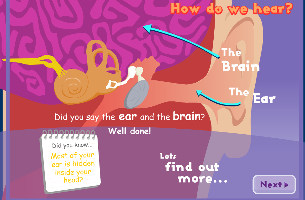 IQ BLOG: Animated Interactive Presentation on the Anatomy of the Ear.