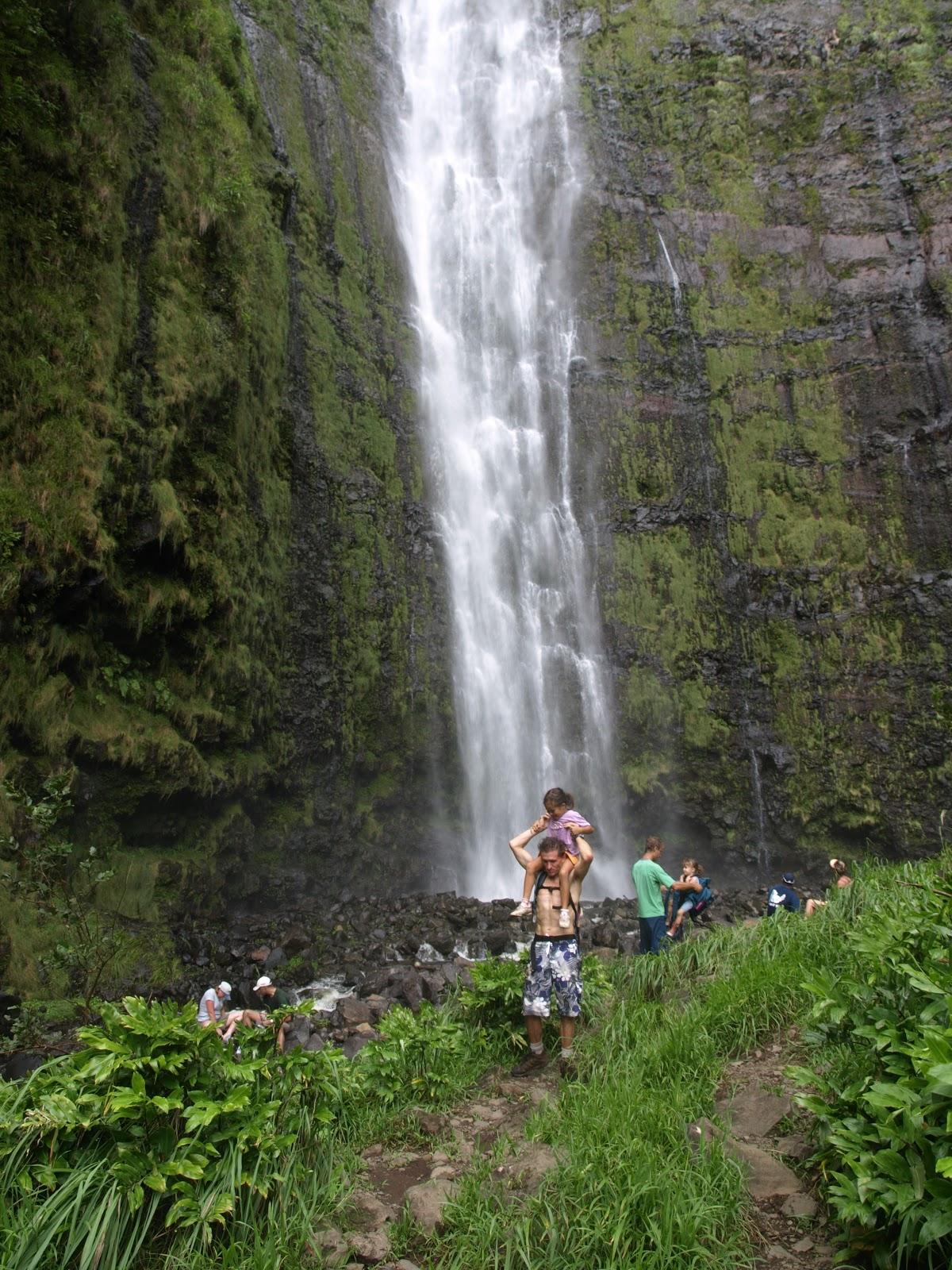 Ridge Hike Maui Maui Video Hiking Trail Clips