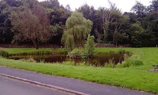 Duck pond at Osmaston