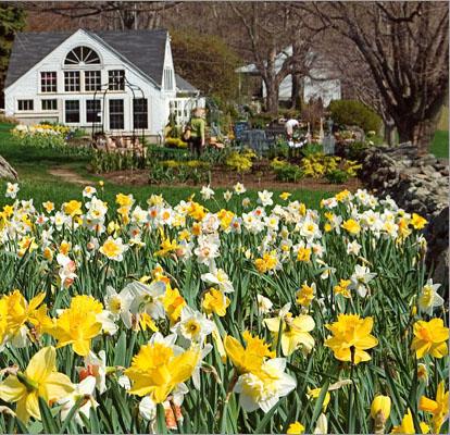 White flower farms blog akrossfo aromatherapy oils white flower farmhouse mightylinksfo