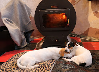 Sleeping by the fire. Again.