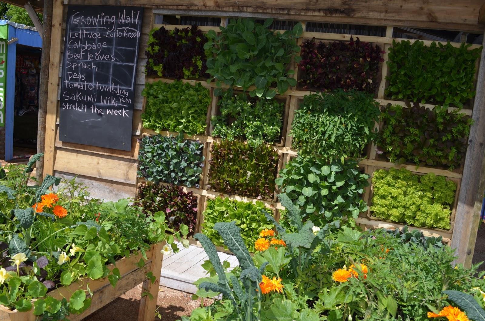 Kelli 39 s northern ireland garden bloom garden show dublin for Garden designs ireland