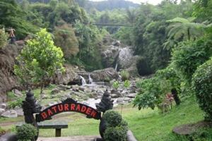 Toko Bunga online di Purwokerto