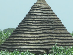 Tukul Roof