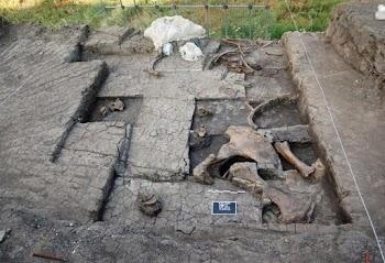 Ευρήματα που χρονολογούνται από την Κατώτερη Παλαιολιθική Περίοδο εντοπίστηκαν στη Μεγαλόπολη