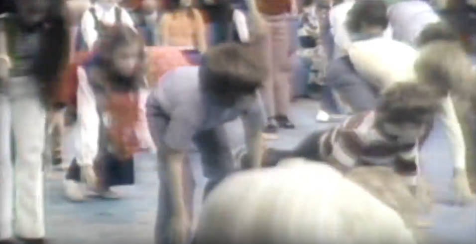 FOUR-COUNT BURPEE, 1973. CLICK ON PHOTO TO WATCH IT!