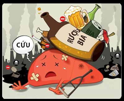 Rượu hủy hoại lá gan như thế nào?