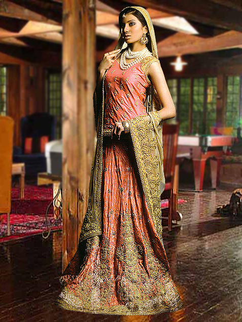 Stylish and elegant Indian style wedding dress | The Hairs