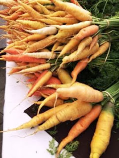 carrots, farmer's market, Boulder, Colorado
