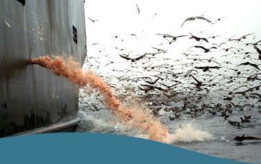 Los pobladores locales han pescado de manera sostenible en la zona durante miles de años, pero podr