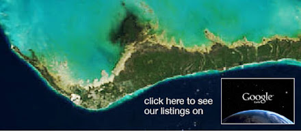 View Listings on Google Earth