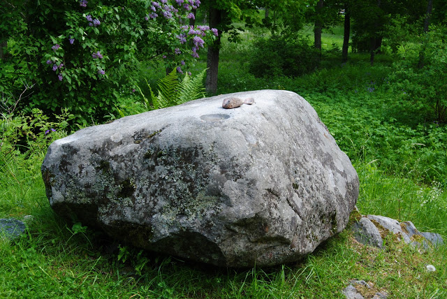 köpa stora stenar