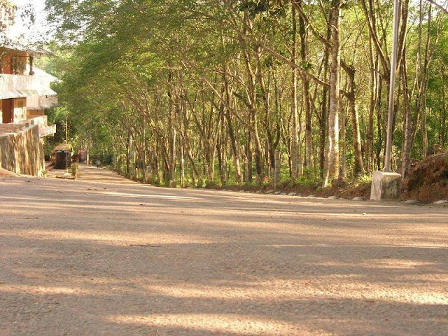 http://vaisakhvs.blogspot.com