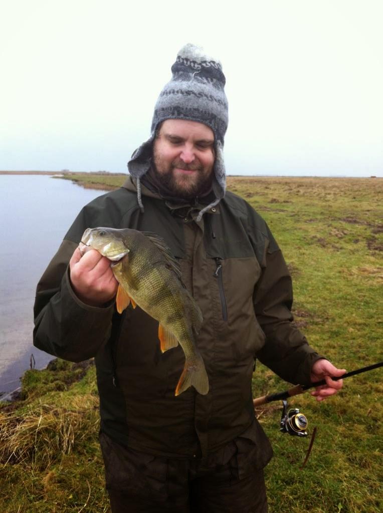 fiske fiskar malmö