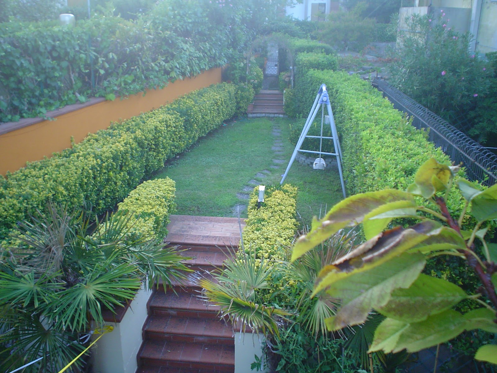 Sette gatti ed una nota casa terminata casa pubblicata - Gradoni giardino ...