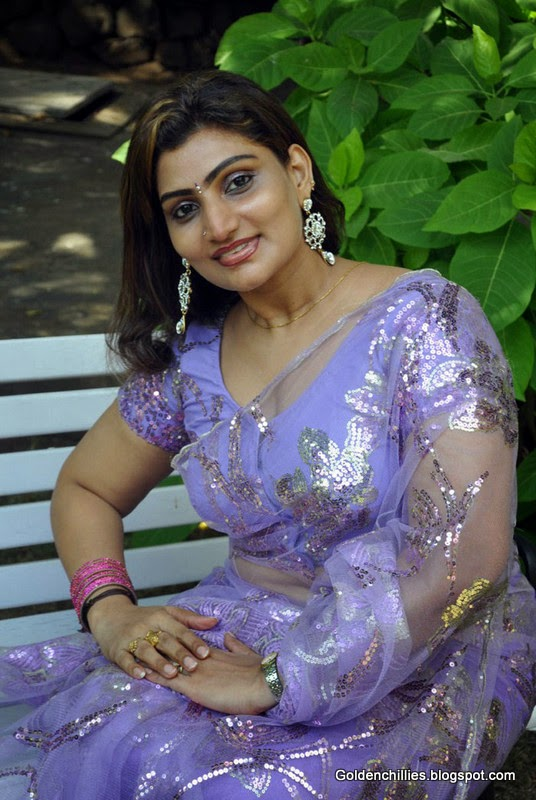South Indian Aunties in Transparent saree hot pics