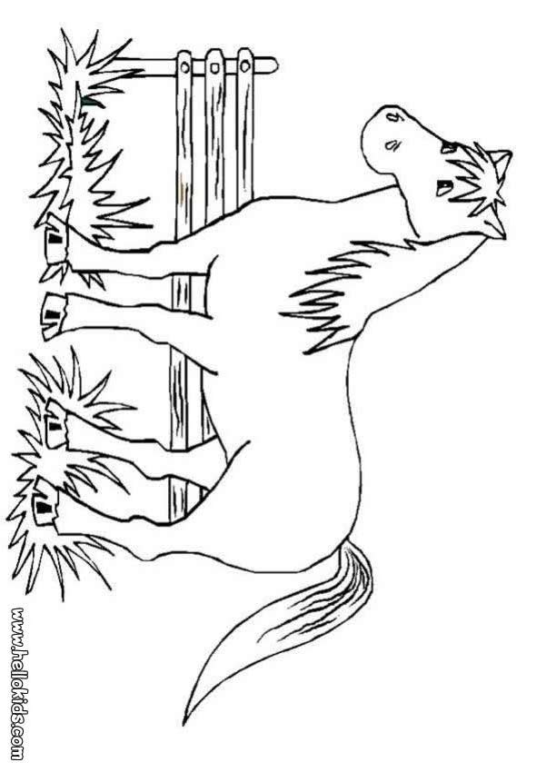 horse print off coloring pages - photo#9