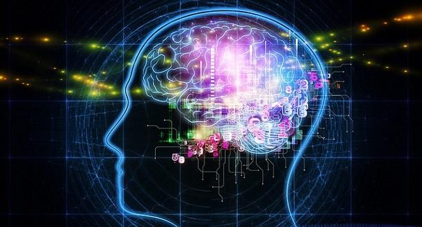 O que é a neurociência?