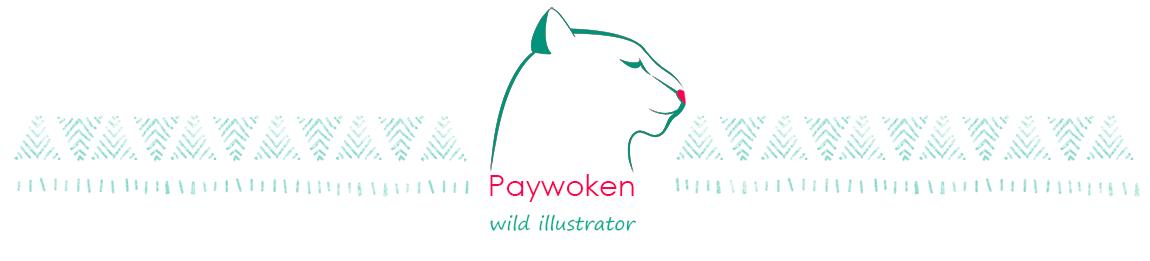 Paywoken